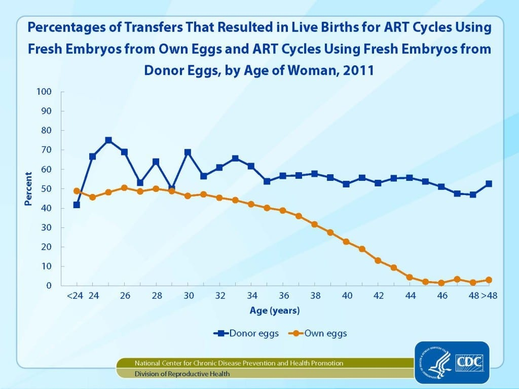 Fresh vs donor eggs